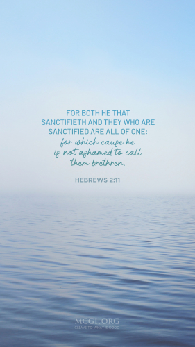 For both he that sanctifieth and they who are sanctified are all of one: for which cause he is not ashamed to call them brethren, - Hebrews 2:11  (Phone)